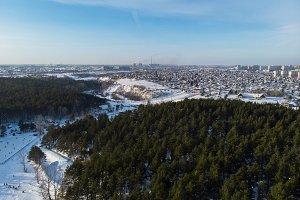 Aerial view of winter forest and