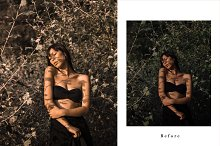 Lightroom Desktop Preset | AMBER by  in Actions