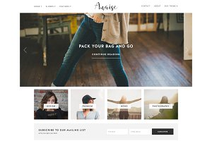 WordPress Theme, Responsive, Anaise