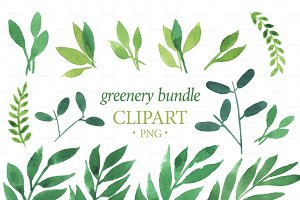 GREENERY BUNDLE clipart