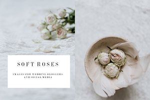 SOFT ROSES WEDDING PHOTOS