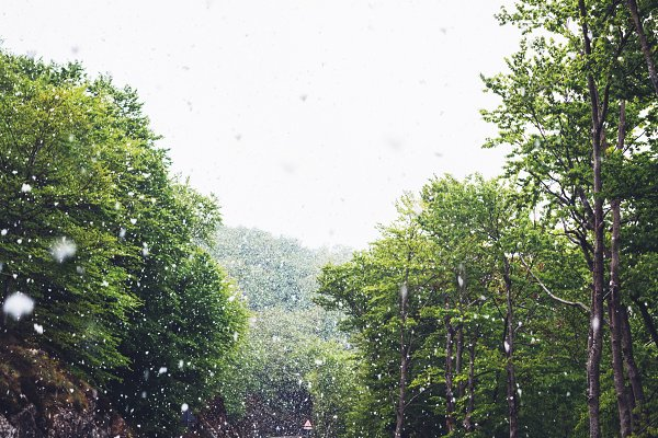 Nature Stock Photos: A_B_C - Falling snow in the mountains