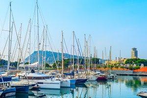 Yachts and sailboats in marina