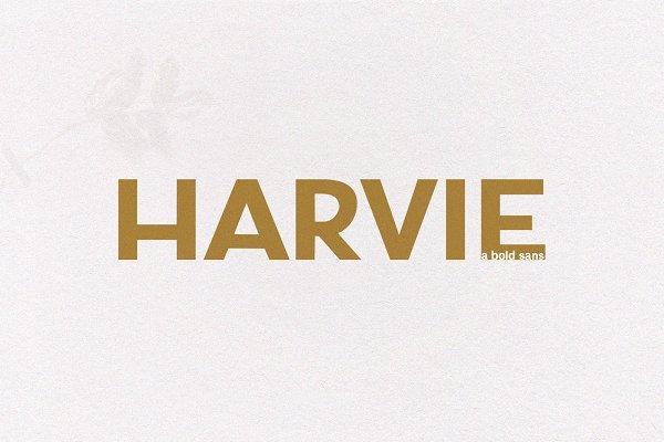 Fonts: KA Designs - Harvie - A Bold Sans Font