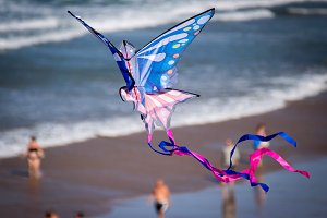 Kite flying on the beach