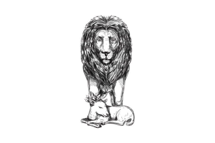 aa4bdde30968f Lion Guarding Lamb Tattoo ~ Illustrations ~ Creative Market