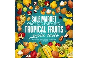 Tropical vector fruits, exotic food