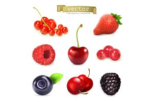 Sweet berries, vector illustration