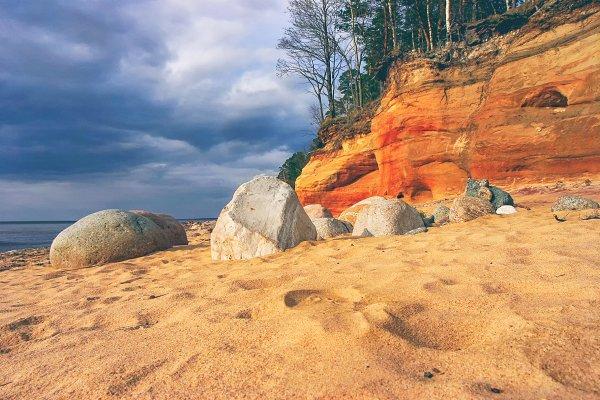 Red sandy high Baltic coast