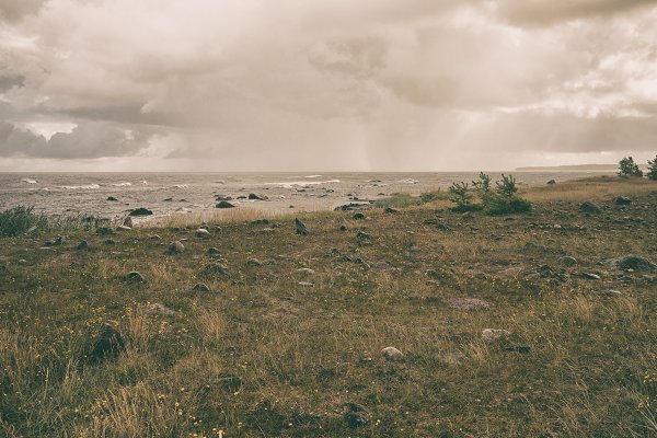 Nature Stock Photos: VictorGrow - The coast of the Baltic Sea in the