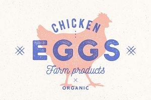 Chicken Eggs. Vintage hand drawn