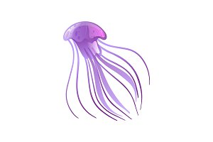 Jellyfish, Beautiful Purple
