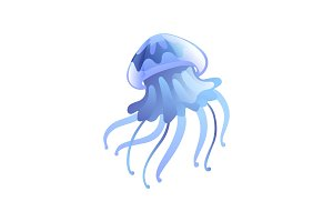 Jellyfish, Beautiful Light Blue