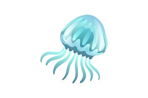 Jellyfish, Beautiful Swimming