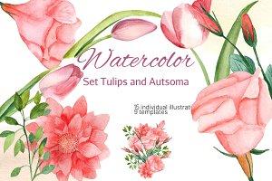 Watercolor Set Tulips and Autsoma