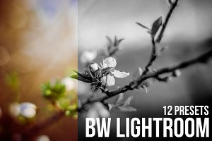 (50% off) 12 BW Lightroom Presets
