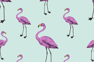 Cute pink flamingo background