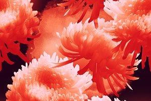 Japanese chrysanthemum pattern | JPG