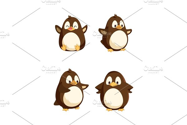 Penguins Showing Emotions Animal