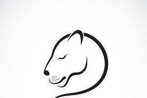Vector of female lion design. Animal