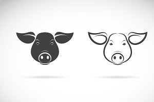 Vector of a pigs head design. Animal