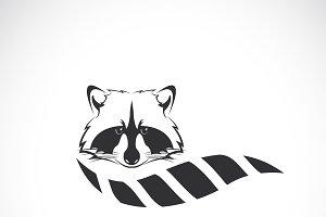 Vector of raccoon design.Wild Animal