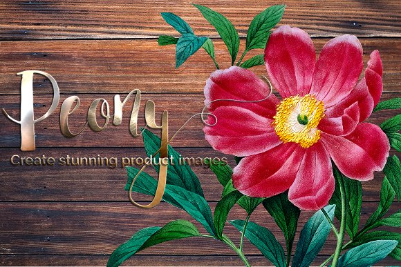 Peony Clipart Pink Flowers in Illustrations - product preview 5