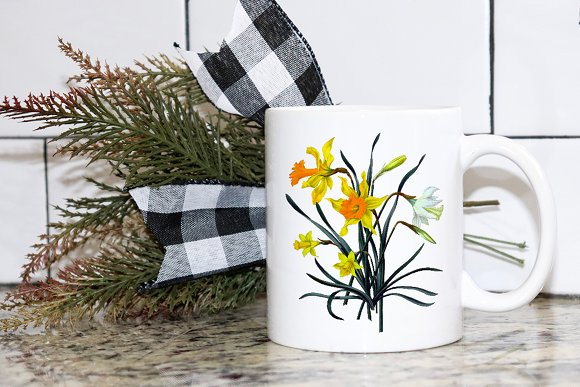 Daffodils Yellow Daffodil in Illustrations - product preview 1