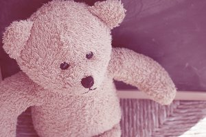 Teddy bear vintage mood
