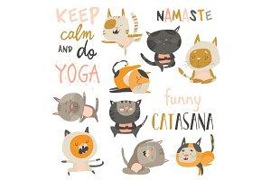 Set of cute cats in yoga asana
