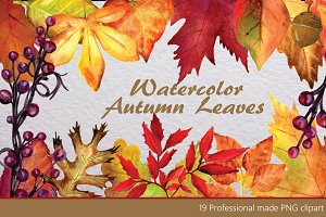 Leaves & Branches Clipart