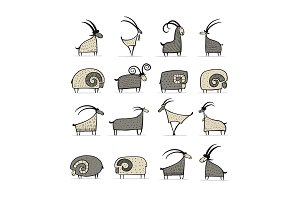 Goats and rams collection for your