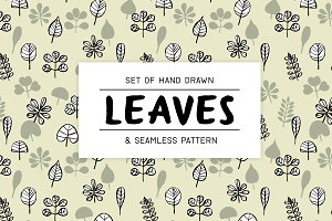 Set of hand drawn leaves and pattern