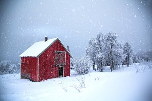 Winter red house in the forest