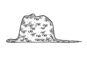 Snake ate elephant engraving vector
