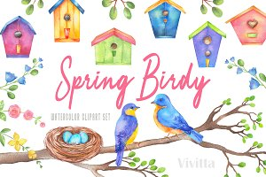 Spring Birdy watercolor clipart set