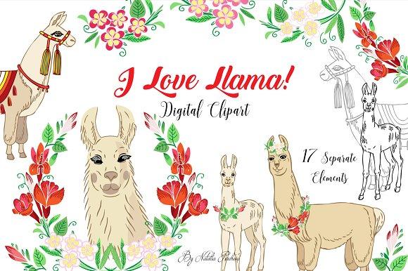 8,078 Llama Illustrations, Royalty-Free Vector Graphics & Clip Art - iStock