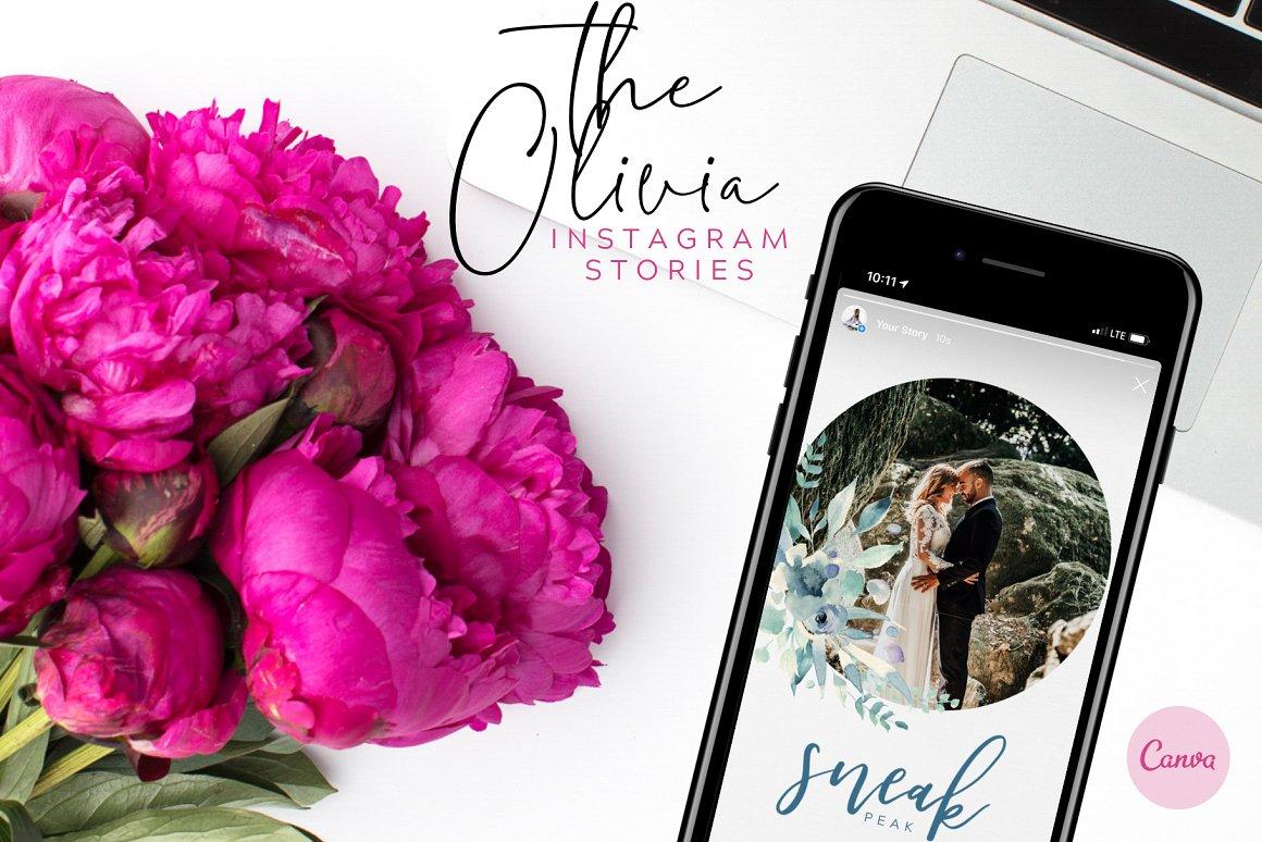 Canva Instagram Stories Template