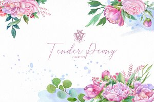 Watercolor peony clipart