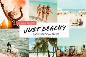 Beach Lovers Preset