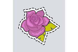 Violet Rose with Green Leaves. Cut