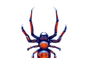 Exotic danger spider with red spots