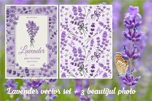 ✿ Gentle lavender in vector ✿