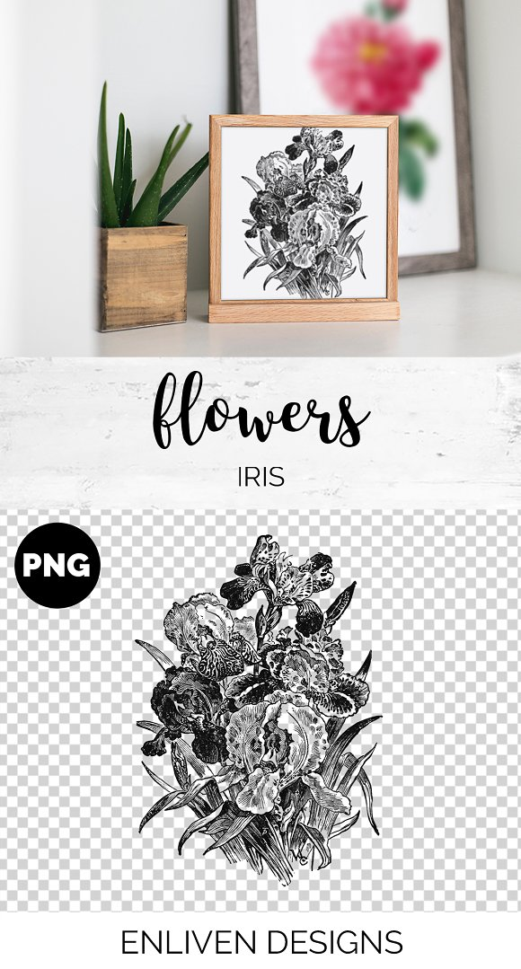 Iris Clipart Black and White Flowers in Illustrations - product preview 1