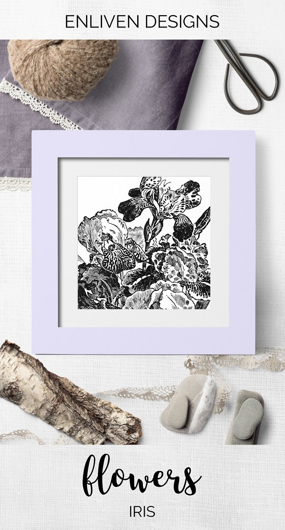 Iris Clipart Black and White Flowers in Illustrations - product preview 7