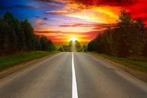 road between trees and beautiful sun