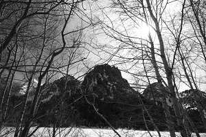 Pyrenees in black and white