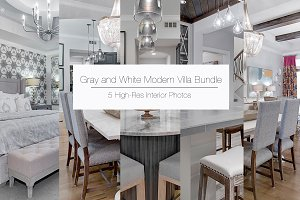 Gray and White Modern Villa Bundle