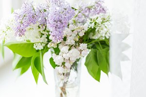 Lilac flowers in glass vase. Spring.