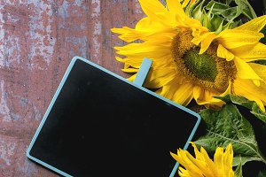 Sunflowers with chalkboard